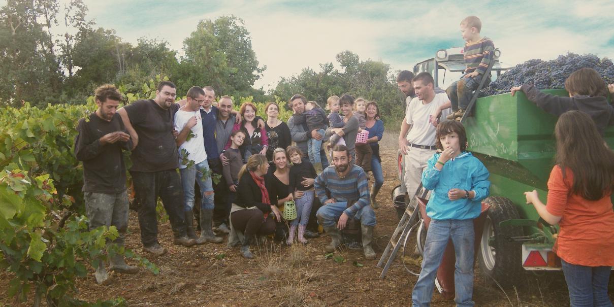 photo de l'équipe dans les vignes